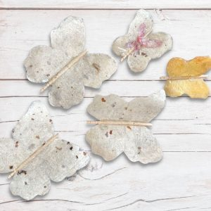 paper-paverpol-butterflies-cover
